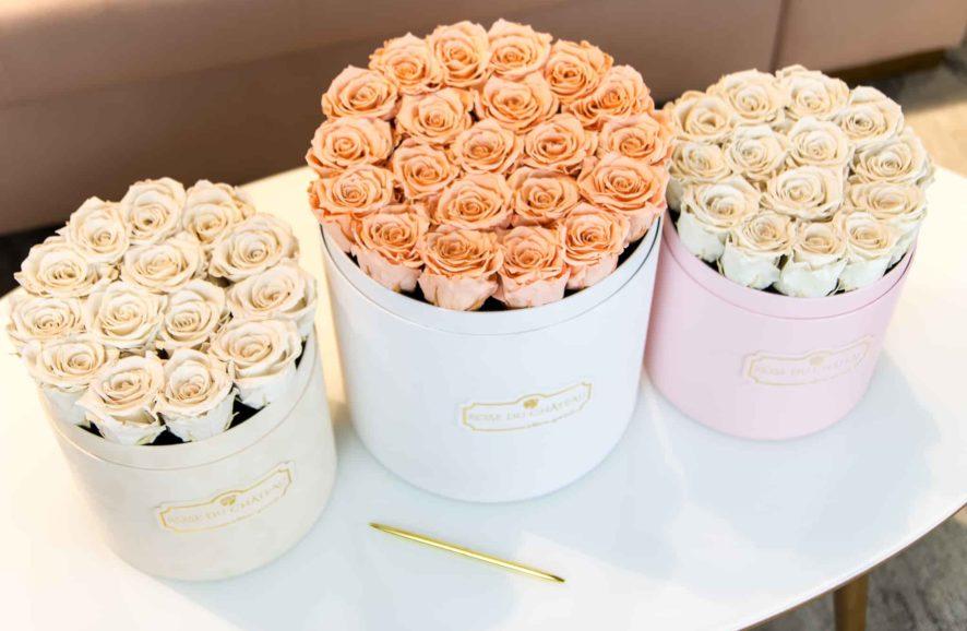 Czym są róże wieczne i jak je pozyskujemy?