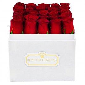 Czerwone Róże Żywe w Białym Kwadratowym Boxie