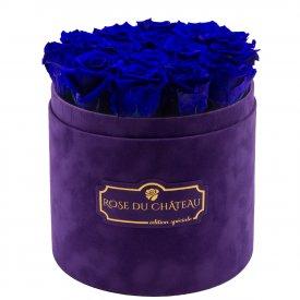Niebieskie Wieczne Róże w Fioletowym Flokowanym Boxie