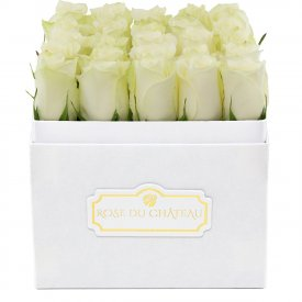 Białe Róże Żywe w Białym Kwadratowym Boxie