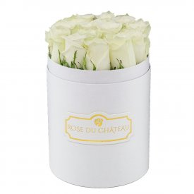 Białe Róże Żywe w Małym Białym Boxie