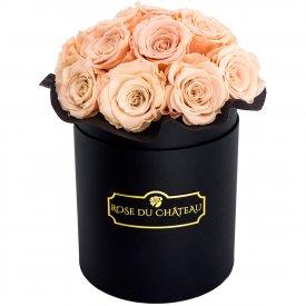 Herbaciane Wieczne Róże w Czarnym Boxie