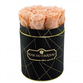 Herbaciane Wieczne Róże w Czarnym Małym Industrialnym Boxie