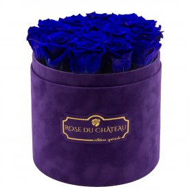 Blaue Ewige Rosen In Violetter Beflockter Blumenbox