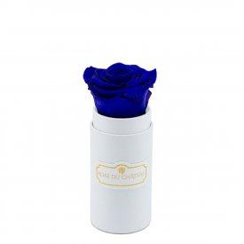 Blaue Ewige Rose In Weisser Mini Blumenbox
