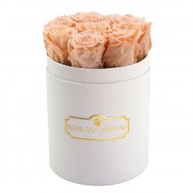 Teefarbene Ewige Rosen in weißer Rosenbox Small