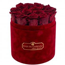 Rote Ewige Rosen in bordeauxroter Beflockter Rosenbox