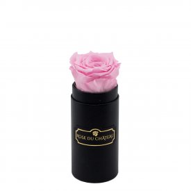 Pale Pink Eternity Rose & Black Mini Flowerbox