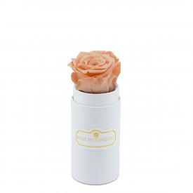 PEACH ETERNITY ROSE & WHITE MINI FLOWERBOX