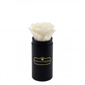 White Eternity Rose & Black Mini Flowerbox