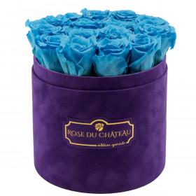 Roses Éternelles Azurées Dans Une Flowerbox Violette Floquée