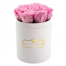 Roses Éternelles Roses Pâles Dans une Petite Flowerbox Blanche