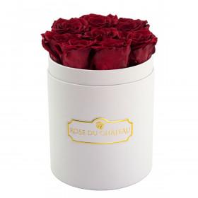 Roses Éternelles Rouges Dans une Petite Flowerbox Blanche