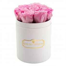 Světle růžové věčné růže v malém bílém flowerboxu
