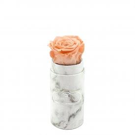 Čajová věčná růže v mini bílém mramorovém flowerboxu