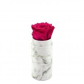 Růžová věčná růže v mini bílém mramorovém flowerboxu