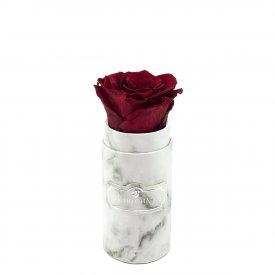 Červená věčná růže v mini bílém mramorovém flowerboxu