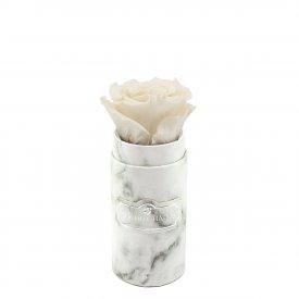 Bílá věčná růže v mini bílém mramorovém flowerboxu