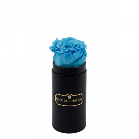 Modrá Věčná Růže v Černém Mini Flowerboxu