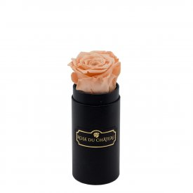 Peach Eternity Rose & Black Mini Flowerbox