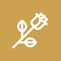 ikona róża