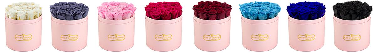 kolory róż